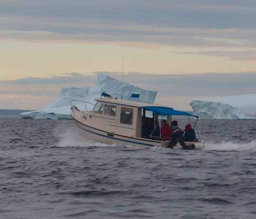 Mary's Harbour, Kanada: Our boat gets up close to some icebergs for tourists