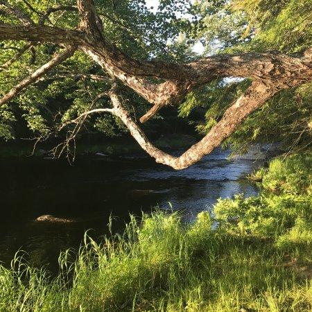 Caledonia, Канада: photo1.jpg