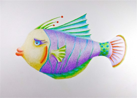 Grace Color Pencil Fish Drawing By Karin Phifer Picture Of Sandphifer Gallery Pacific Beach Tripadvisor
