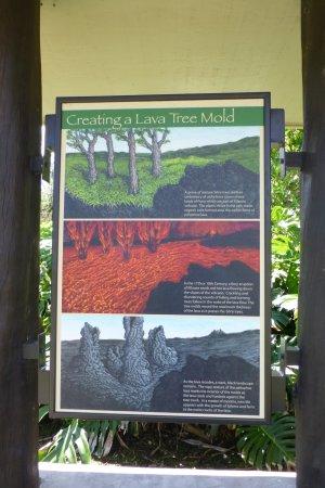 Pahoa, Hawái: Description of formation