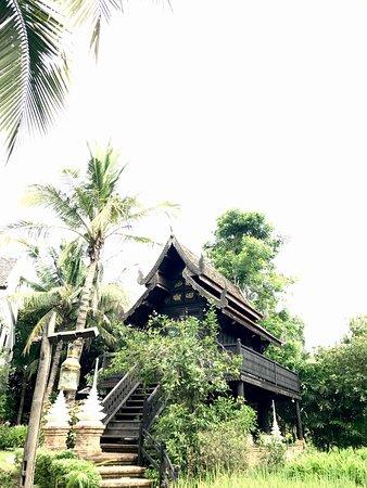 Saraphi, Thailand: photo0.jpg