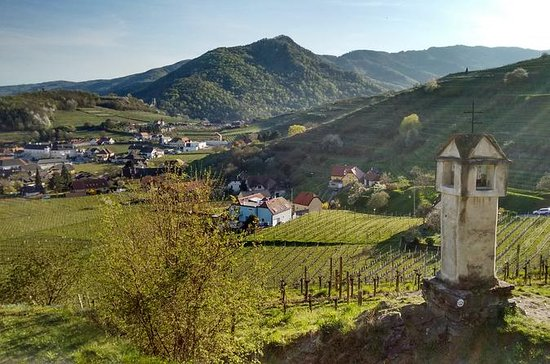 ウィーンからのBeautyfull Wachau ValleyのBuchbe…