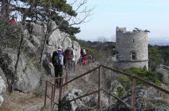 2-Hour Small-Group Hiking Tour along