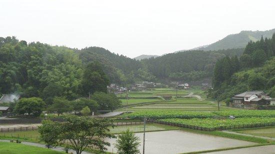Usuki Sekibutsu - Usuki Sekibutsu의 리뷰 - 트립어드바이저