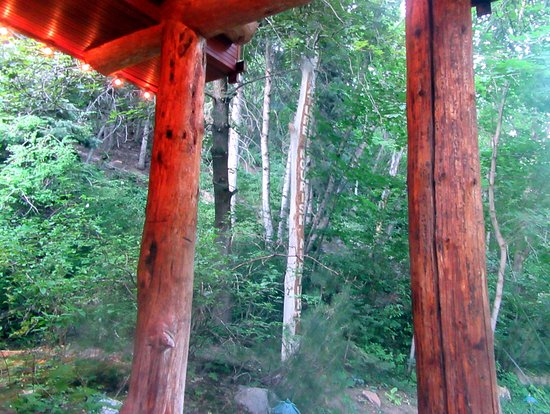 Brighton, Юта: View from Log Haven Restaurant, Mill Creek Canyon, Wasatch-Cache National Forest, Utah
