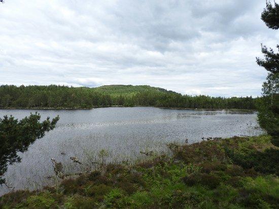 Aviemore, UK: Loch an Eilein