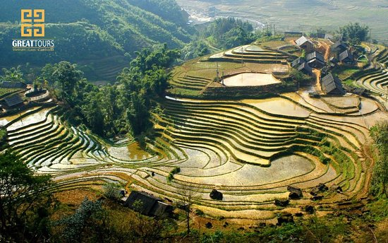 Vietnam Great Tours