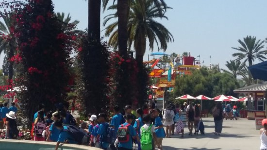 Knott's Soak City U.S.A.: 20170714_145847_large.jpg