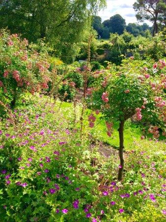 Belvedere House Gardens & Park: photo8.jpg