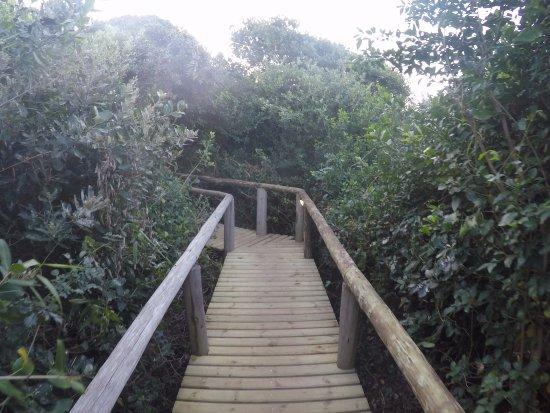 iSimangaliso Wetland Park Photo