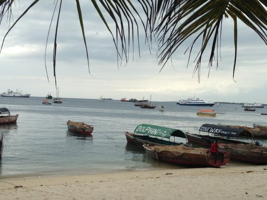 Livingstone Beach Restaurant: The view of the boats from we sat.