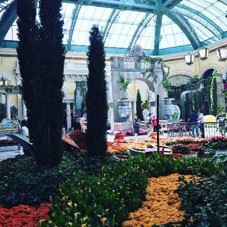 Beautiful Botanical Gardens Picture Of Bellagio Conservatory Botanical Garden Las Vegas