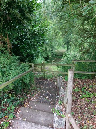 Sainte-Hermine, Francia: Steps to one of the trails
