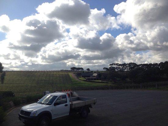 McLaren Vale, ออสเตรเลีย: photo1.jpg