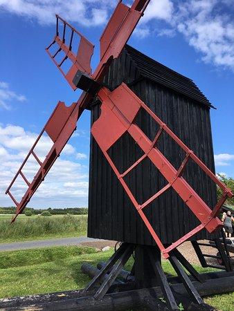 Laesoe Island, Denmark: photo3.jpg