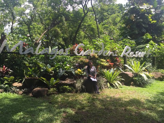 ดาเวา, ฟิลิปปินส์: photo0.jpg