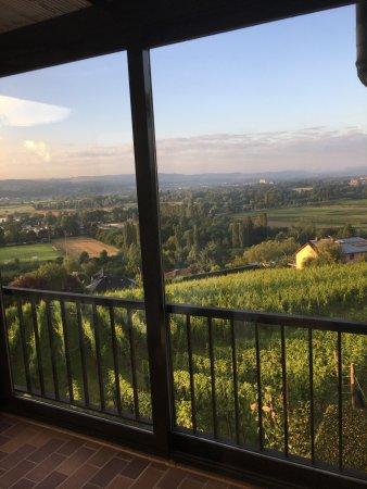 Hotel Des Vignes Restaurant Du Pressoir: Lovely views