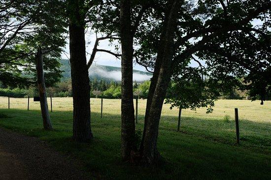 Margaree Valley Φωτογραφία