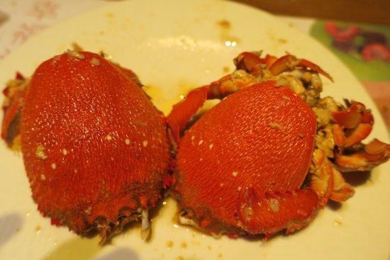 Mega size crabs