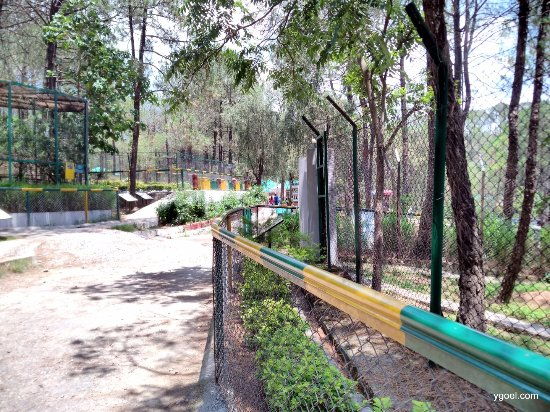 Gopalpur Zoo: the zoo, animals, birds and everything in it