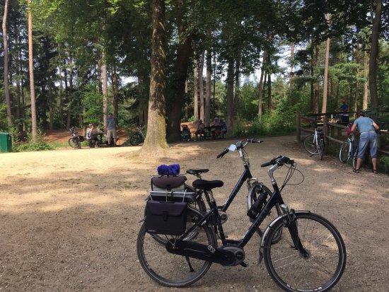 Beekbergen, Holandia: fietsen in de natuur