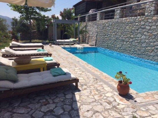 Aoritis Luxurious Traditional Villas: הבריכה