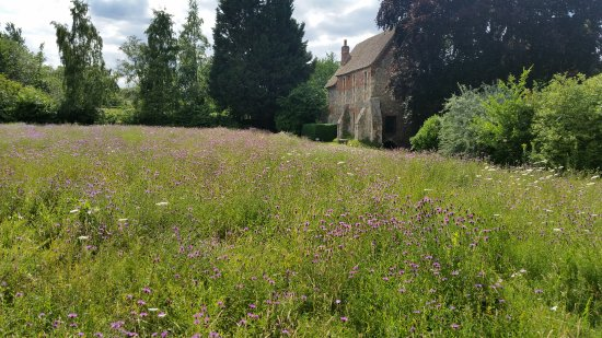 Canterbury Guided Tours: Greyfriars Garden in Canterbury