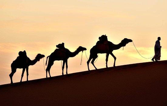 Geo Morocco Tours