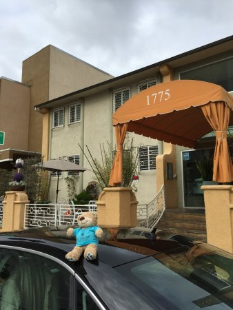 Hollywood Celebrity Hotel Picture