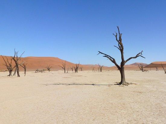 Namib-Naukluft Park, Namibia: The Eerily Beautiful Deadvlei