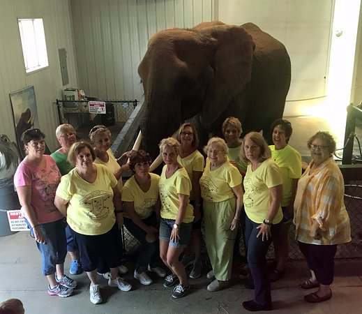 Paoli, Индиана: Terre Haute Newcomers and Friends visit WIlstem Ranch