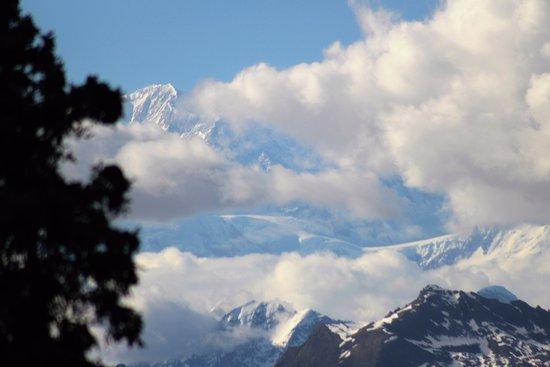 Trapper Creek, AK: More State Park Views of Denali/North End Park