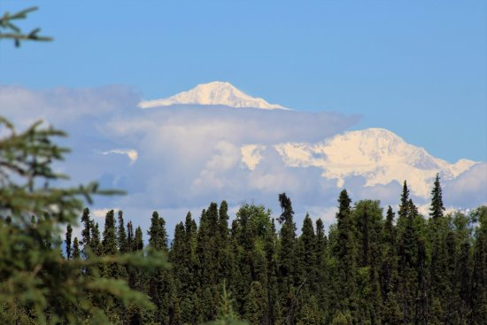 Trapper Creek, อลาสกา: More State Park Views of Denali/South End Park