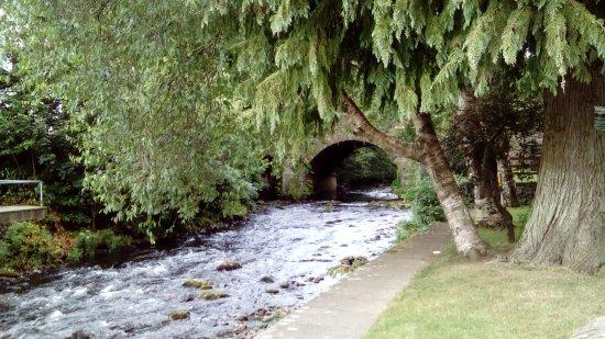 Avoca, Irlanda: DSC_1599_large.jpg