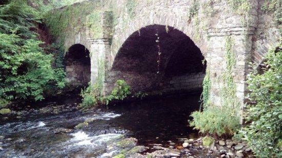 Avoca, Irlanda: DSC_1592_large.jpg