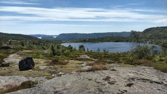 Коммуна Люнгдал, Норвегия: Fjell vann