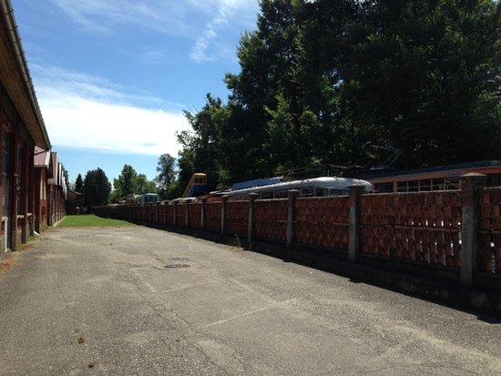 Volandia Parco e Museo del Volo Malpensa: Tram and bus graveyard