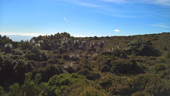 Tasmania, Australia: beauty of nature