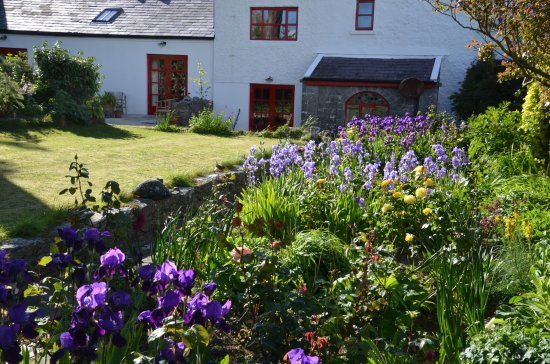 The Burren, Ireland: The beautiful garden.