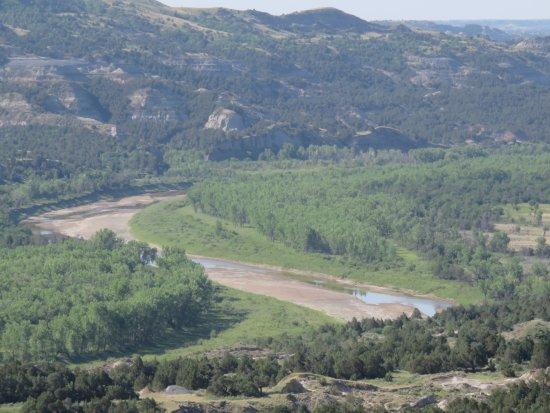 Oxbow Overlook: River Closeup