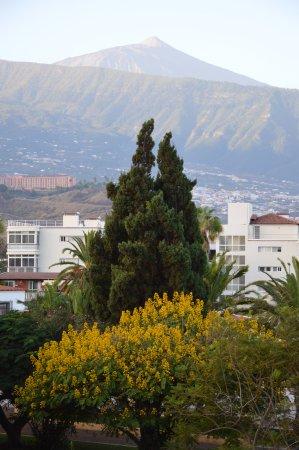 Masaru Apartments: Vue sur le Teide