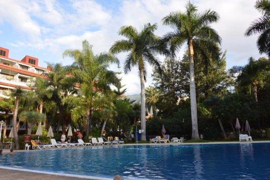 Masaru Apartments: La grande piscine
