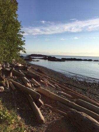 Nanaimo, Canada: The beach is amazing