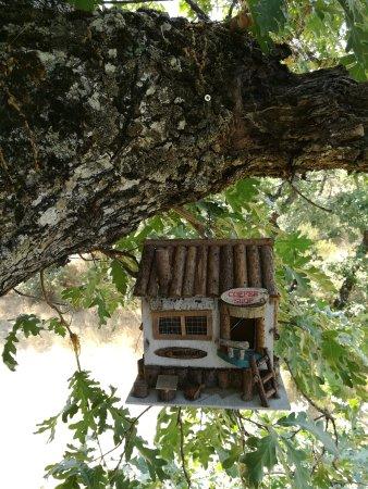 Caba as en los rboles de extremadura villasbuenas de - Cabanas en los arboles espana ...