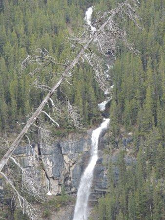 Waterfall at Sunwapta Pass