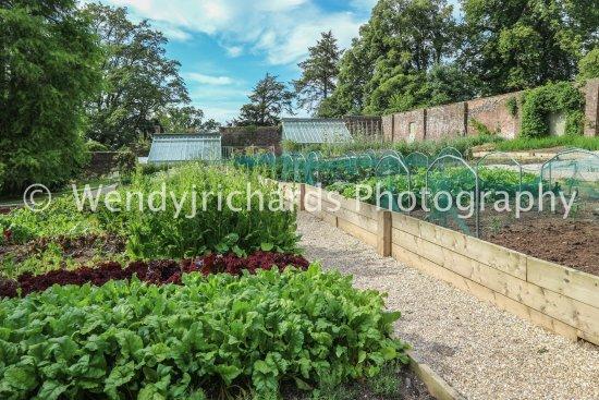 Gittisham, UK: Walled Garden