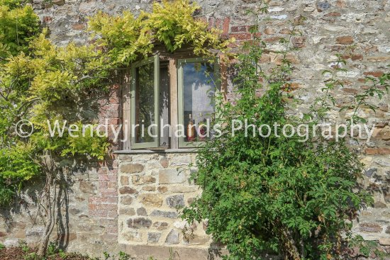 Gittisham, UK: On the way to the courtyard