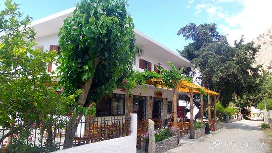 Agia Roumeli, Greece: Auberge PACHNES . Au pied de la montagne et à deux minutes de la mer