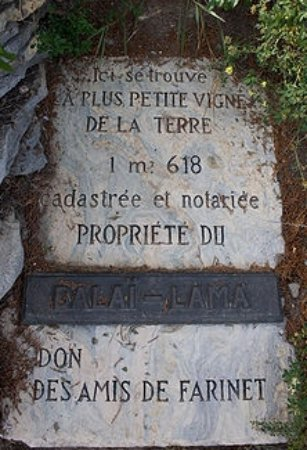 Saillon- Vigne à Farinet (plaque)