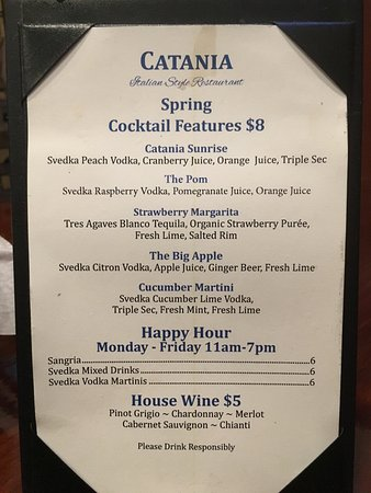 Wellington, FL: drink menu!